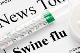 swine flu news image
