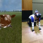 images from virtual reality study